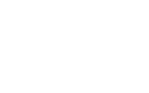 logo_special_mrmartini